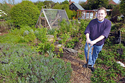 Grow vegetables on your own allotment