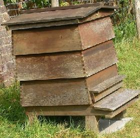 buy a Beehive for home beekeeping