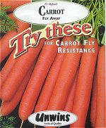 Carrot seeds which are resistant to carrot fly