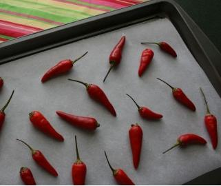 Drying chilli peppers in the oven