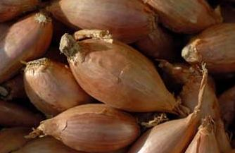 Shallots can be pickled