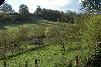 Smallholding for sale in Herfordshire